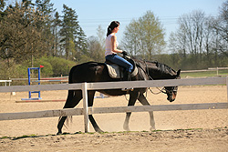 romantika u koní